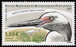 TAAF - 2020 - Dimorphic Egret - Mint Stamp - Ungebraucht