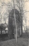 Cambron-Casteau NA8: Le Château.Fontaine St-Bernard 1914 - Brugelette