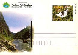 Cp 1302 Poland Pieninski Park Narodowy Parnassius Apollo Ssb. Frankenbergeri 2003 - Papillons