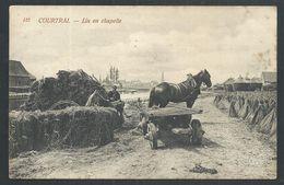 +++ CPA - KORTRIJK - COURTRAI - Lin En Chapelle - Culture - Attelage - Agriculture   // - Kortrijk