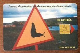 TAAF ATTENTION ÉLEPHANT DE MER TÉLÉCARTE 50 UNITÉS RÉFÉRENCE PHONECOTE TAAF22 PHONECARD - TAAF - Terres Australes Antarctiques Françaises