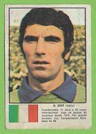 Italia - Cromo Dino Zoff - Squadra Azzurra - Chrome - Calcio - Stadio - Football - Futebol - Stadium - Estadio - Stade - Sports