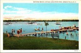 New York Seneca Falls Cayuga Lake State Park Bathing Beach Curteich - Adirondack