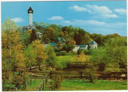 Wildenburg Mit Wildfreigehege - Kempfeld/Hochwald - Birkenfeld (Nahe)