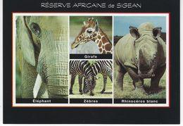 ANIMAUX - RESERVE AFRICAINE DE SIGEAN - ELEPHANT - ZEBRES - RHINOCEROS BLANC - Animali