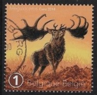 Voorhistorische Dieren - Belgium