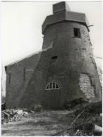 AALTER (O.Vl.) - Molen/moulin - Romp Van De Oude Molen In 1983. Historische Opname. Nadien Gerenoveerd. - Aalter