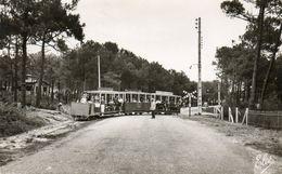 33. CPSM. CAP FERRET -  Petit Train Forestier Traverse  Route De Bordeaux - J.Jacques MIllet, Constructeur - Scan Verso. - Ouvrages D'Art