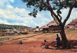 Uganda - Village Scene - Uganda