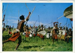 SWAZILAND  Swazi Warriors In A Tipical War Dance - Swasiland