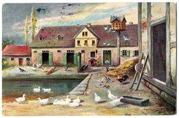 CPA Ferme  Poules  Canards Coq 1907 - 1900-1949