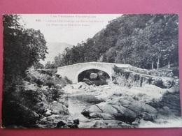 LAMANERE  ( PYR - ORIENTALES )  N ° 832  Le Pont De La Route Du CORAL   - PRATS De MOLLO - France