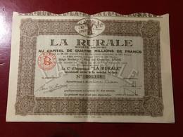S.A.  LA  RURALE  Cie  D' Assurance ---------Action - Bank & Insurance
