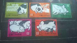 China 1960 Pig-breeding СТО - 1949 - ... Repubblica Popolare