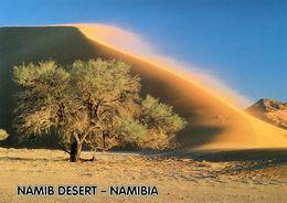 Namibia - Namib Desert - Namibia