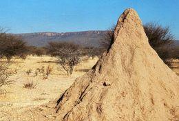 Namibia - Waterberg - Namibia