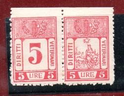 MARCHE DA BOLLO  - DIRITTI VETERINARI LIRE 5 Coppia CON FASCIO LITTORIO - 1900-44 Vittorio Emanuele III