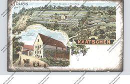 0-5321 GROSSHERINGEN - KAATSCHEN, LIthographie, Gasthof Zum Saalthal, Prof. Hendrich's Weinberg - Bad Sulza