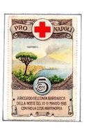 MARCHE DA BOLLO  - CENT. 5 PRO CROCE ROSSA  NAPOLI A RICORDO DELL'ONTA BARBARICA... - 1900-44 Vittorio Emanuele III