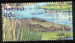Namibie 1998 - Crocodile Du Nil, Crocodylus Niloticus - Non Classés