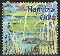 Namibie 1998 - Mamba Noir (Dendroaspis Polylepis) - Serpenti