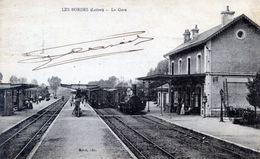 45   LES BORDES  LA GARE AVEC TRAIN - Autres Communes