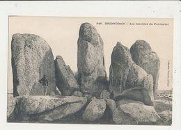 29 BRIGNOGAN LES MENHIR DU PONTUZVAL  CPA BON ETAT - Dolmen & Menhirs