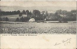 VIELSALM - Château De Hermamont 1904 - Vielsalm