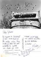 Provence A Decouvrir. Pigeonnier - Provence-Alpes-Côte D'Azur