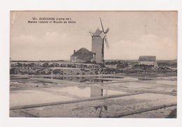 CPA GUERANDE : MOULIN De Saillé Dans Les Marais Salants - Ed. Chapeau, Nantes - N° 221 - 2 Scans - Moulins à Vent