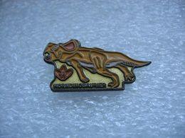 Pin's Dinosaure HORNDINOSAURIER - Animaux