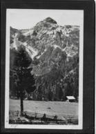 AK 0517  Blick Von Der Tauristika Hütte Auf Hochbirg - Verlag Schöllhorn Um 1942 - Tamsweg