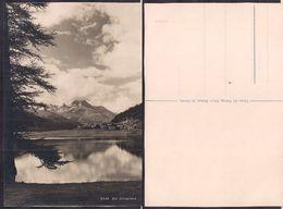 Suisse - Carte Postale - Bei Silvaplana -  Non Circulee - Circa 1930 - Cygnus - GR Grisons