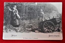 CPA 1902 - Vieux Métiers - Laitières Flamandes - Attelage/ Chien - Venters