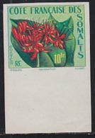SOMALI COAST (1958) Haemanthus. Imperforate. Scott No 270, Yvert 290. - French Somali Coast (1894-1967)