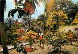 Martinique - Les Trois Ilets - Auberge De L'Anse Mitan - Jardin - CPM - Voir Scans Recto-Verso - Martinique