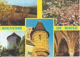 CPM France 78 Yvelines Maule Multivue 5 Vues - Maule