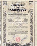 Compagnie Du Cambodge Certificat Nominatif D Action Annulé - Acciones & Títulos