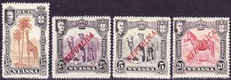 Portugal Nyassa 1901-1911 Lot Of Definitives Afinsa 30, 52, 53, 55 Mi 30, 52, 53, 55 MNH ** - Nyassa