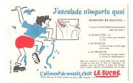 Buvard L'aliment Du Muscle C'est Le Sucre J'escalade N'importe Quoi - Format : 13.5x21 Cm - Süssigkeiten & Kuchen