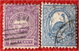 NEW SOUTH WALES - 1888 - VEDUTA DI SYDNEY ED EMU - USATI - Gebruikt