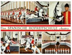 (A 32) Austria - Vienna - Spanish Horse School - Elefantes