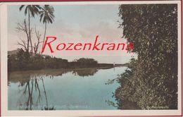 Old Postcard Indian River Portsmouth Dominica Caribbean Sea Caraïbes  Lesser Antilles Antillen West Indies British - Dominique
