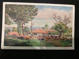 Postcard Max Vollmberg , Edition S. Mugdan 1945 - Salvador