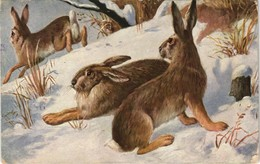 Ansichtskarte  Künstlerkarte Hasen Im Schnee 1931 - Chats