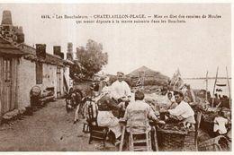 Dept 17,Charente Maritime,Cpm La Belle Epoque En Charente...Chatelaillon,Mise En Filet Des Essaims De Moules - Châtelaillon-Plage