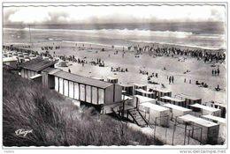 Carte Postale  40.  Mimizan-plage   Trés Beau Plan - Mimizan