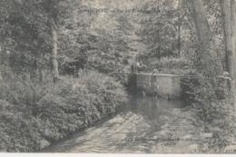 Jodoigne , Vue Au Rendange ( Les Ponts ) ( édit Martin Sansdraps , Mercerie ) - Jodoigne