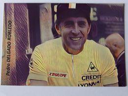 Pedro DELGADO - Signé / Dédicace Authentique / Autographe - Cycling