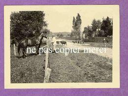 MAIZIERES LES JOINVILLE - Chemin Des Preuils Soldats Allemands S'occupant Des Chevaux, Vaches Au Fond - TRES RARE - France